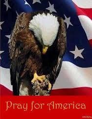 eagle praying