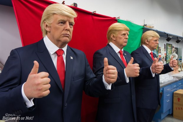 trump-ripleys