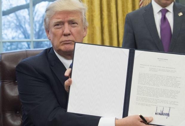 trump-signs